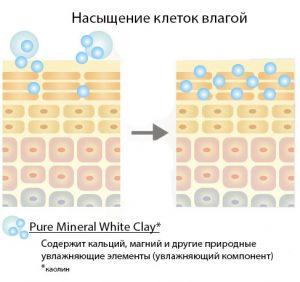 Milbon-Plarmia-Balancing-Scalp